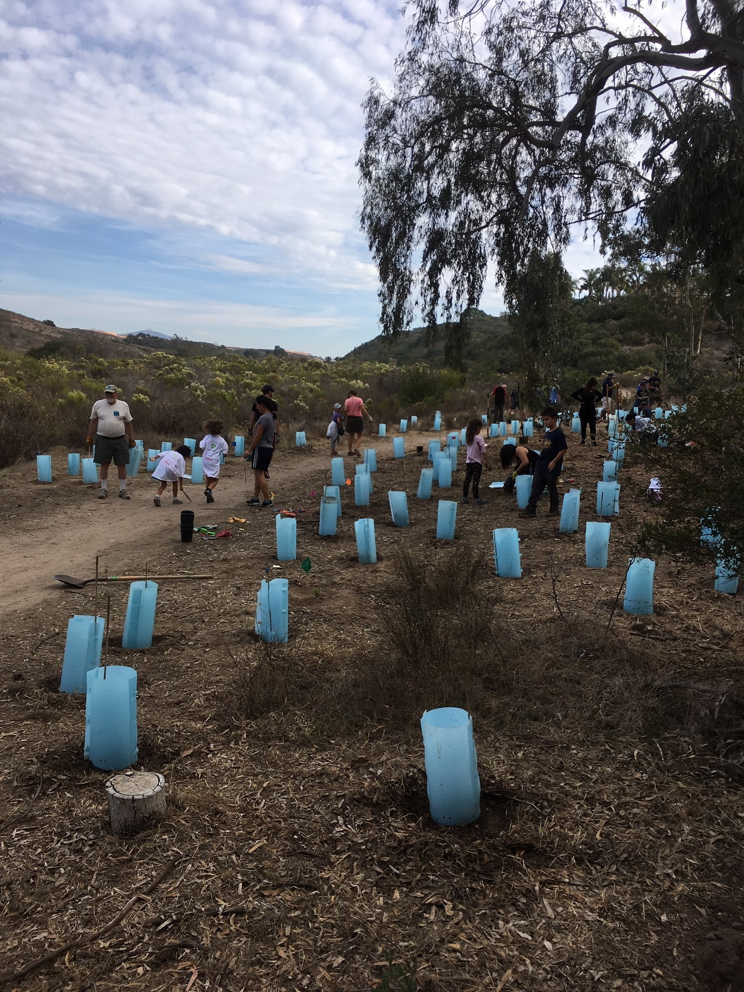 Volunteers at work in Gonzales Canyon.