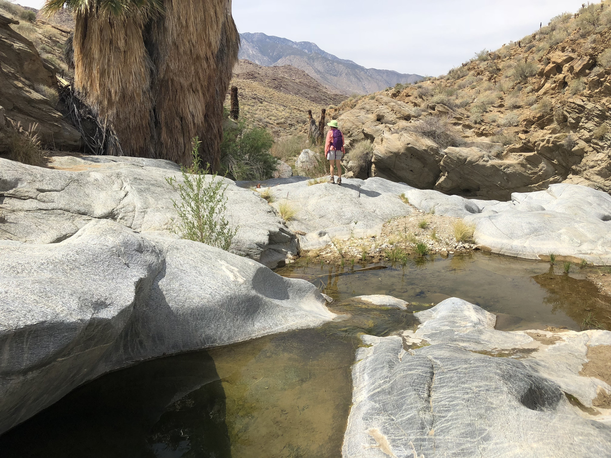 A hiker walks along granite slabs sculpted by tumbling waters on the Stone Pools Trail near Palm Spr