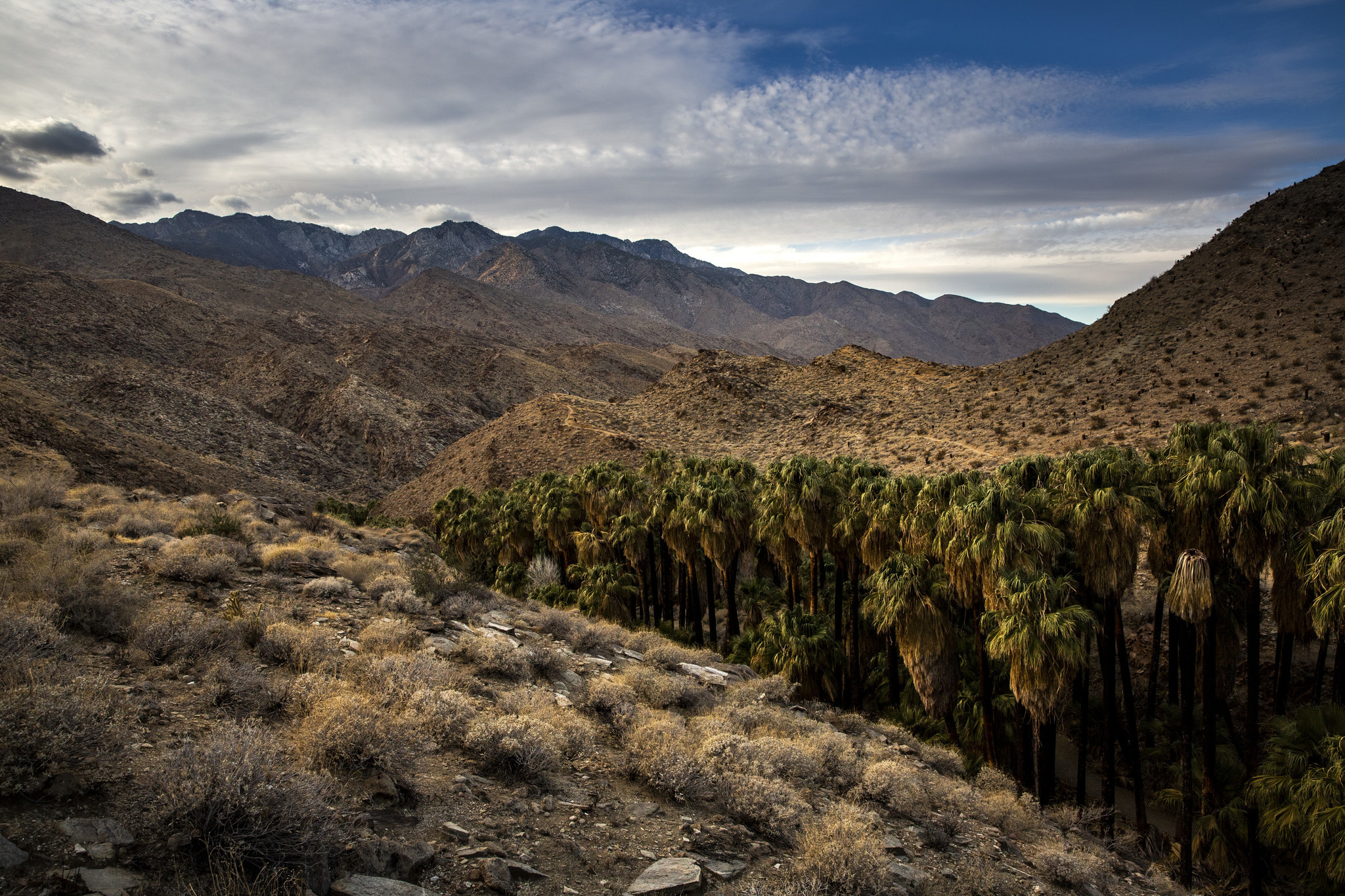 PALM SPRINGS, CALIF. - NOVEMBER 25: A view from the Palm Canyon Trail at Indian Canyons on Sunday, N