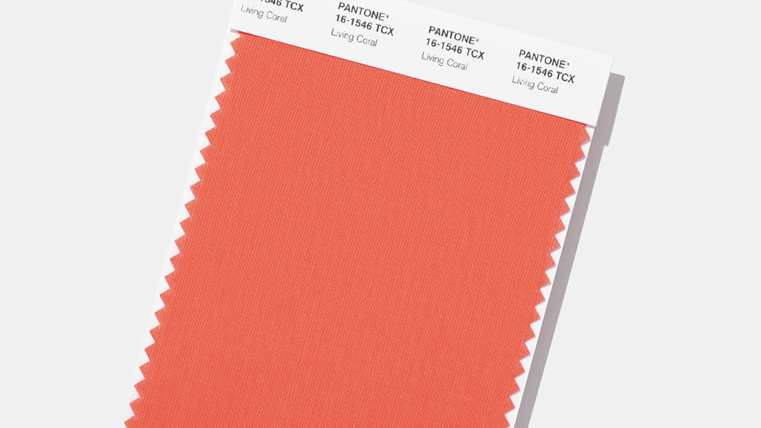 Extreem Pantone announces 2019 color of the year, and it's basically 'a &QM36