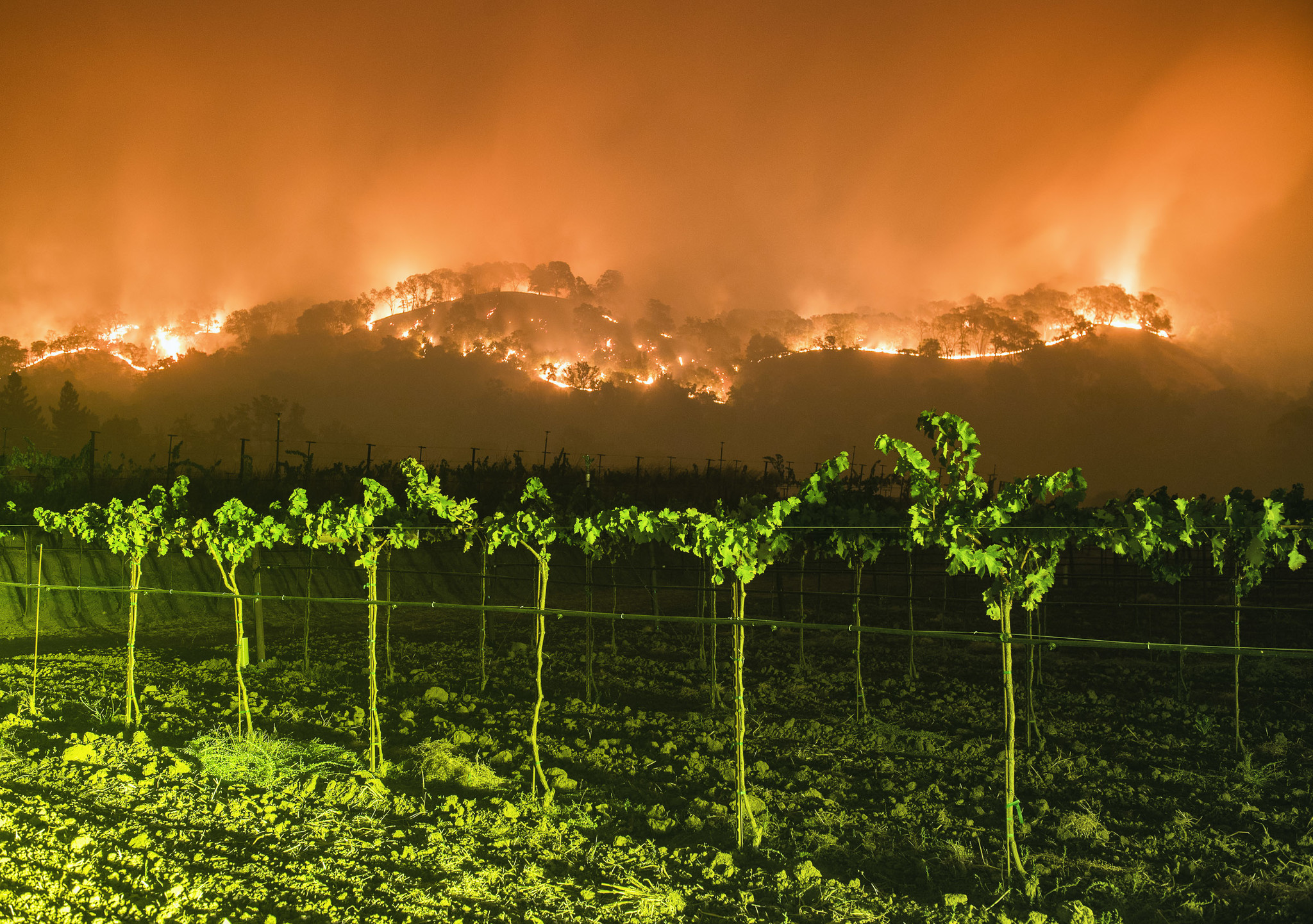 "California's Atlas fire, ""Terra Flamma: Wildfire at Night"" by Stuart Palley"