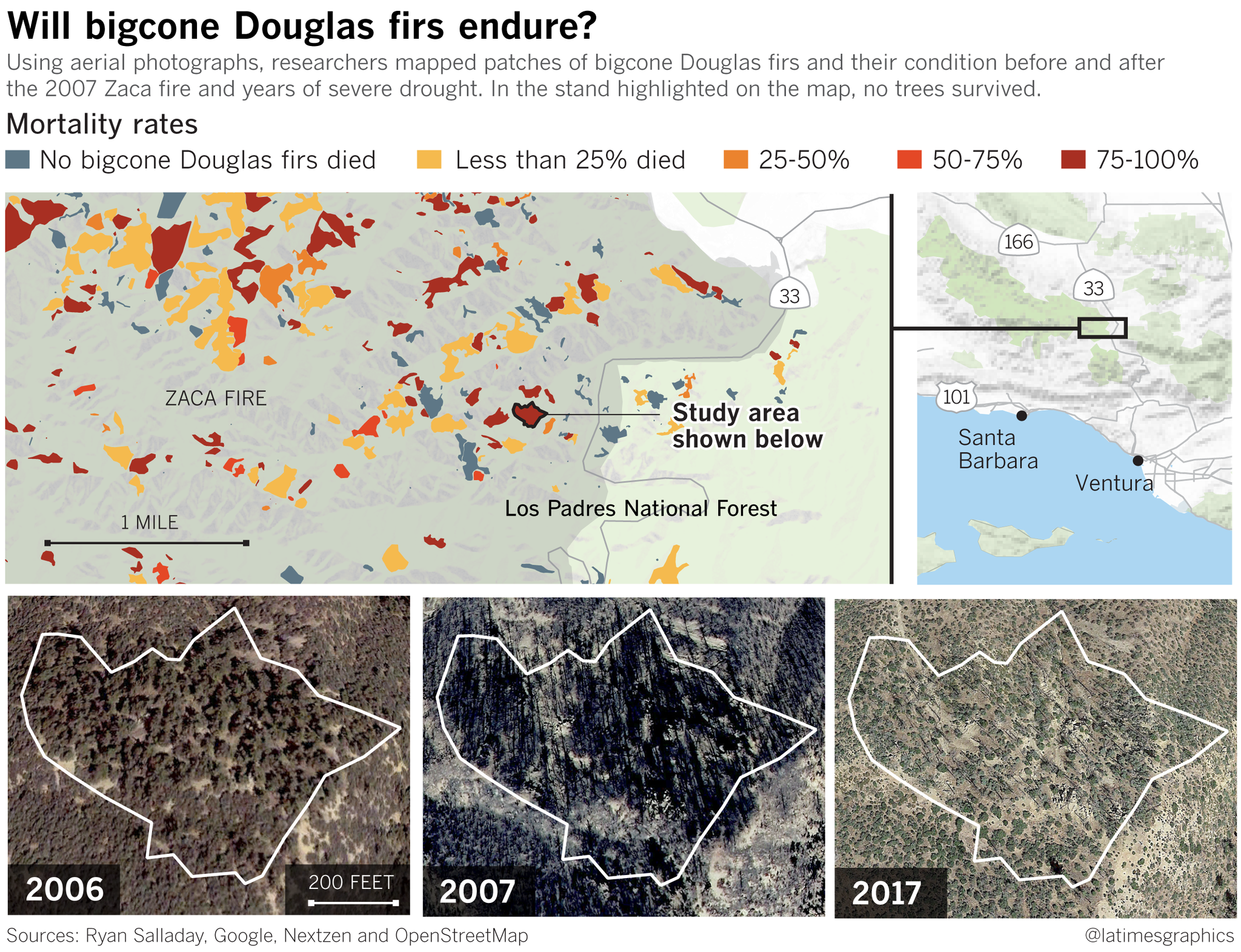 More Wildfires Drought And Climate Change Bring Devastating Changes