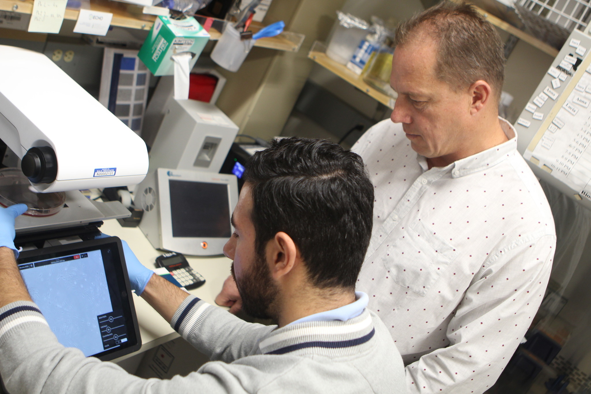 Nassour and Karlseder research autophagy in their lab.