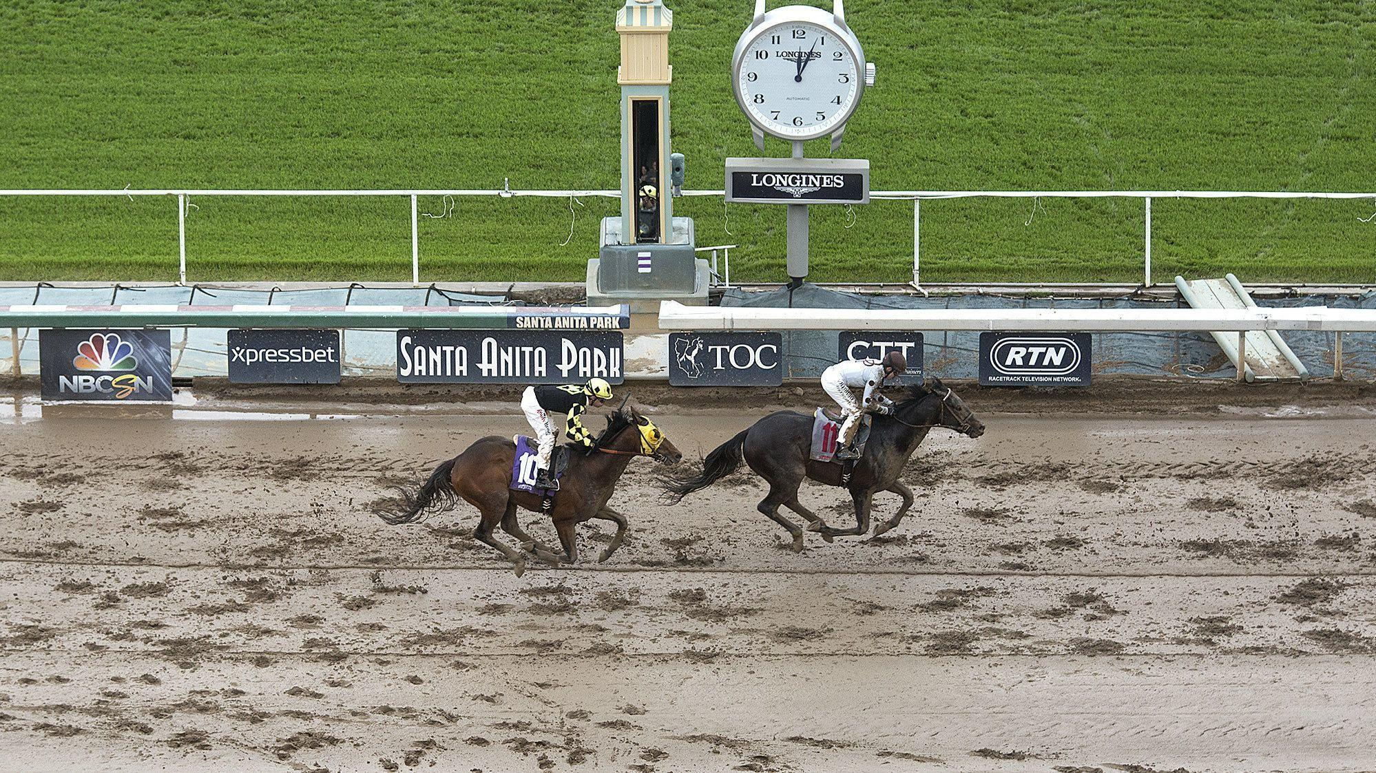 Recent Spike In Horse Deaths At Santa Anita Stirs Concern