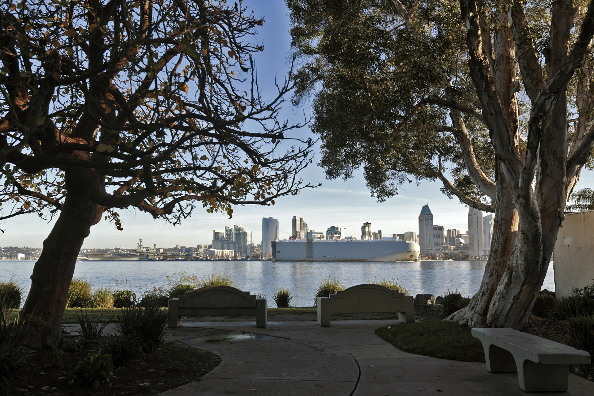 A view of downtown San Diego from Coronado Island's Bay View Park on Jan. 19.