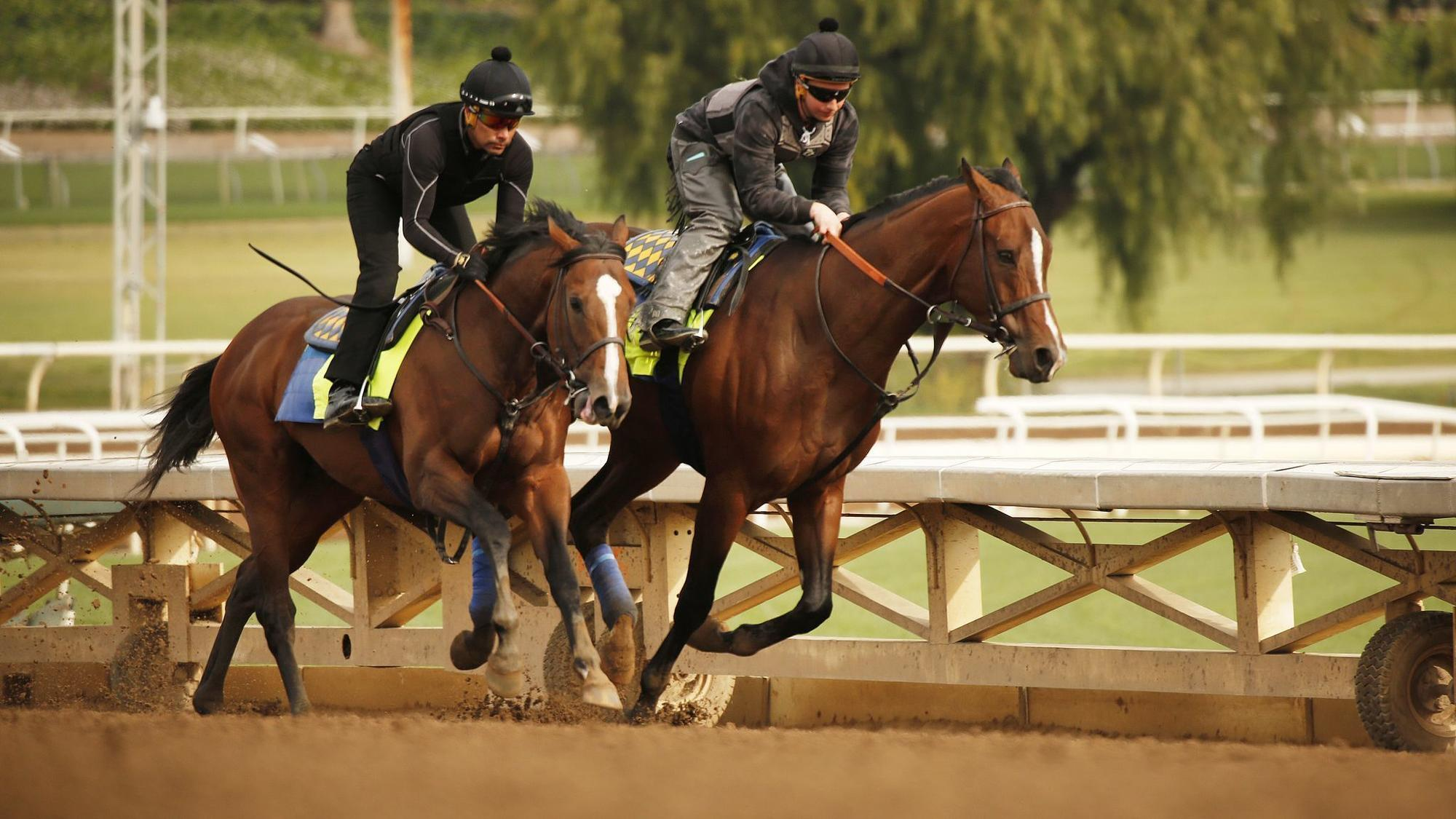 Santa Anita Needs Close The Track Until They Figure What