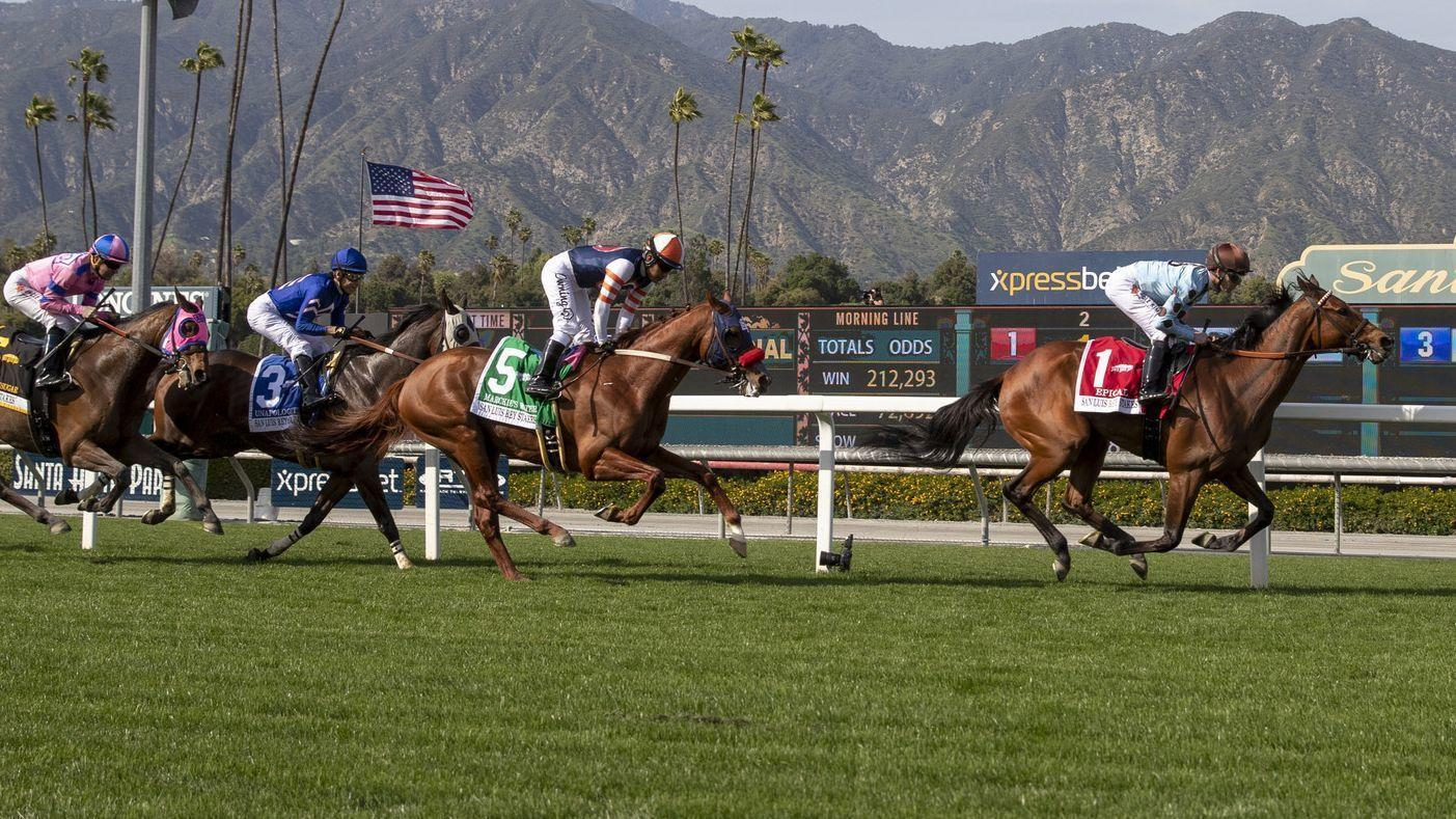 Another Horse Fatality At Santa Anita 23 Thoroughbreds