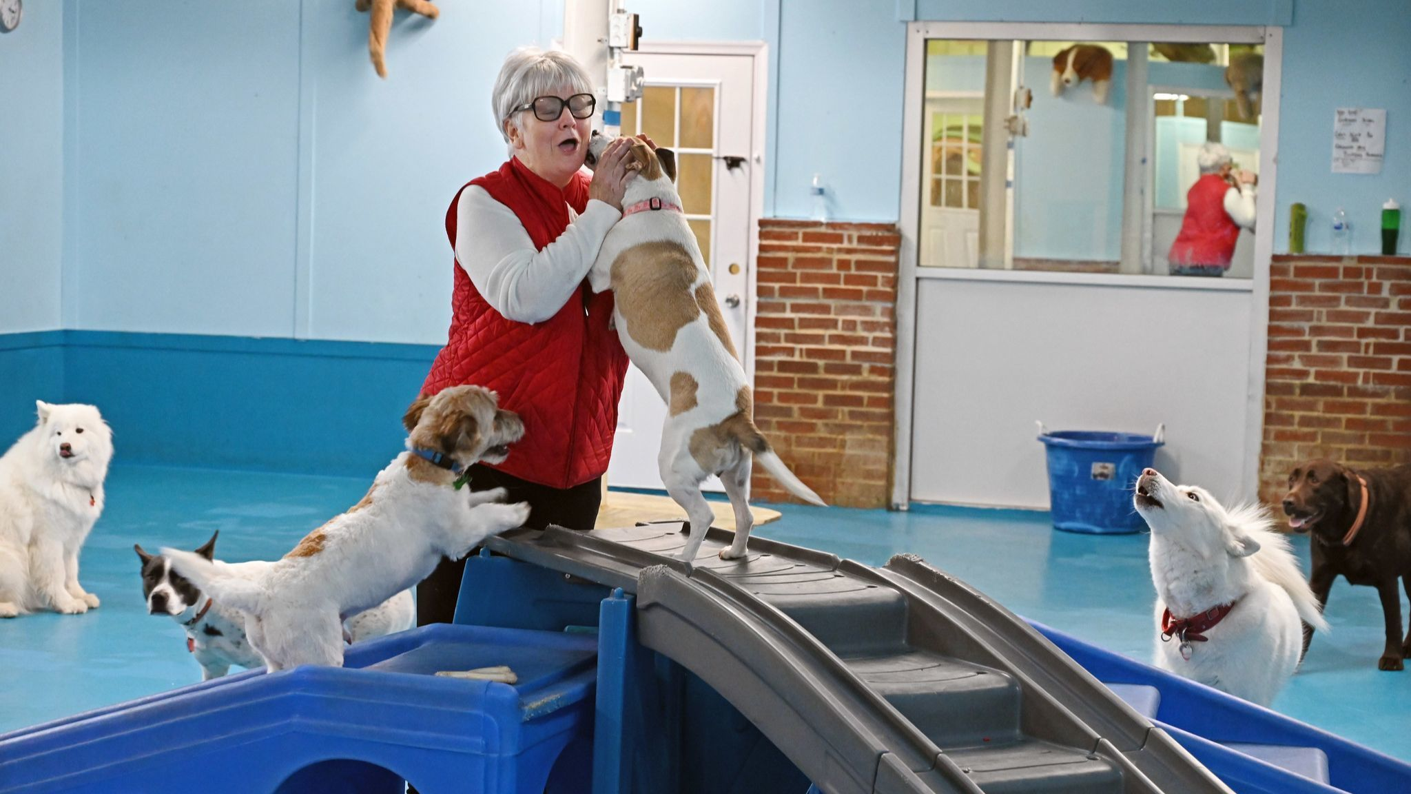 Good Doggie Day Care owner Jo Anne Garrett plays with some of the over 120 pooches the personal serv
