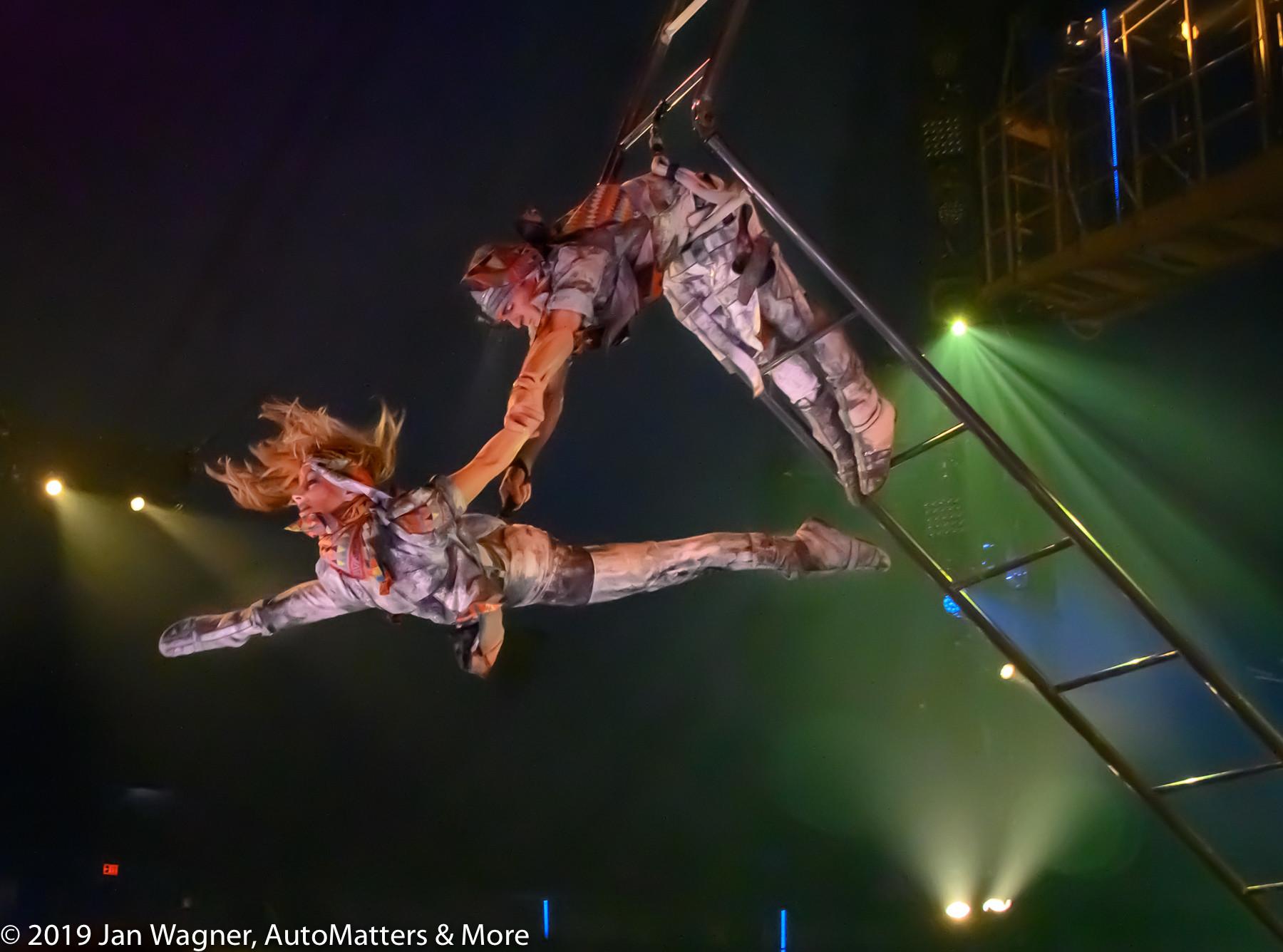 Acrobatic ladder