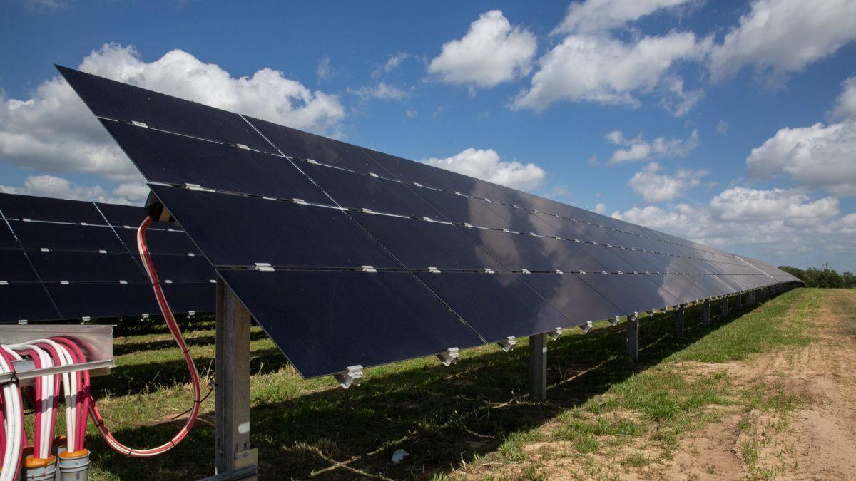 Disney World S New Solar Farm Is Twice The Size Of The