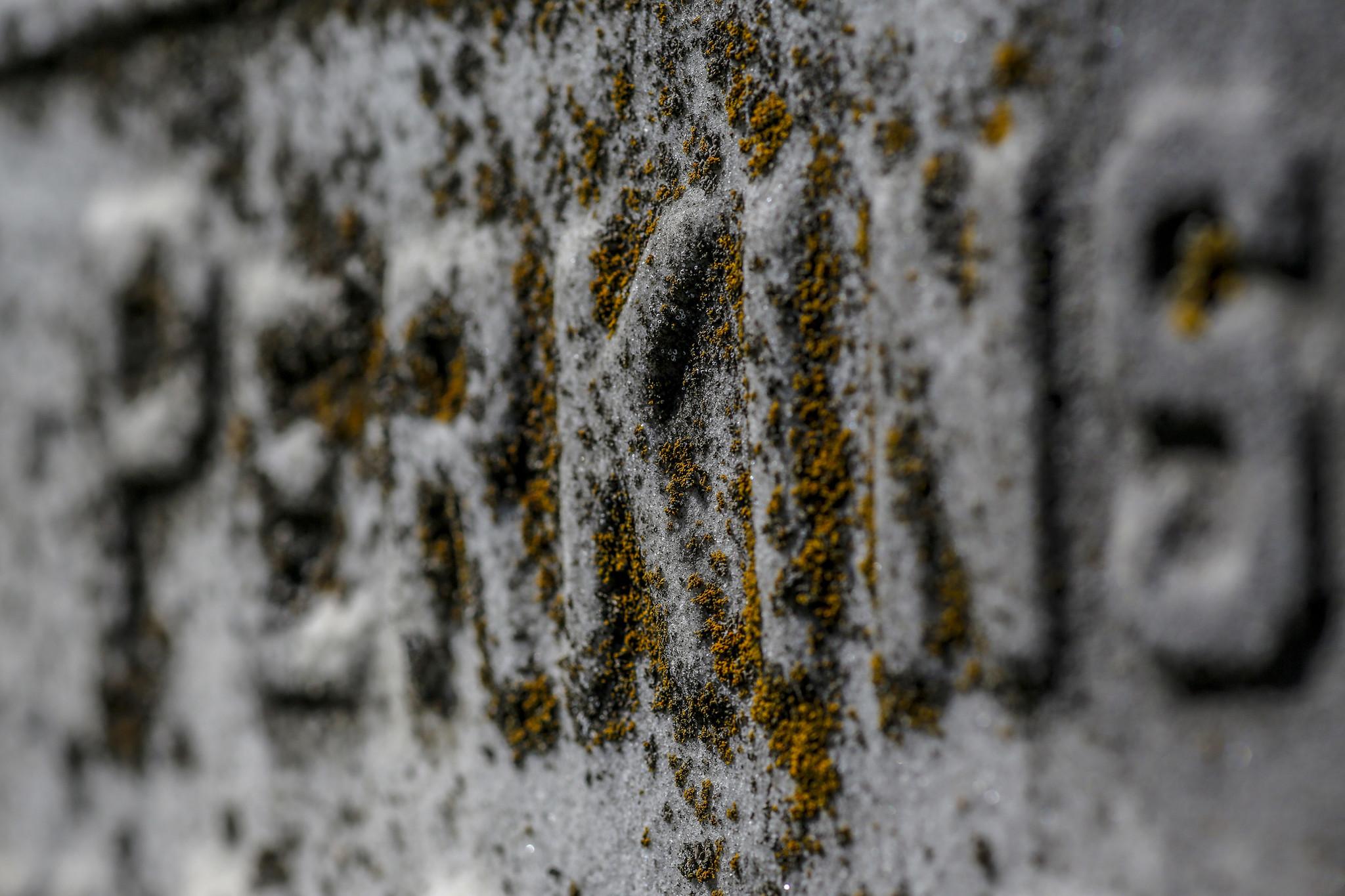 Perkins family headstone
