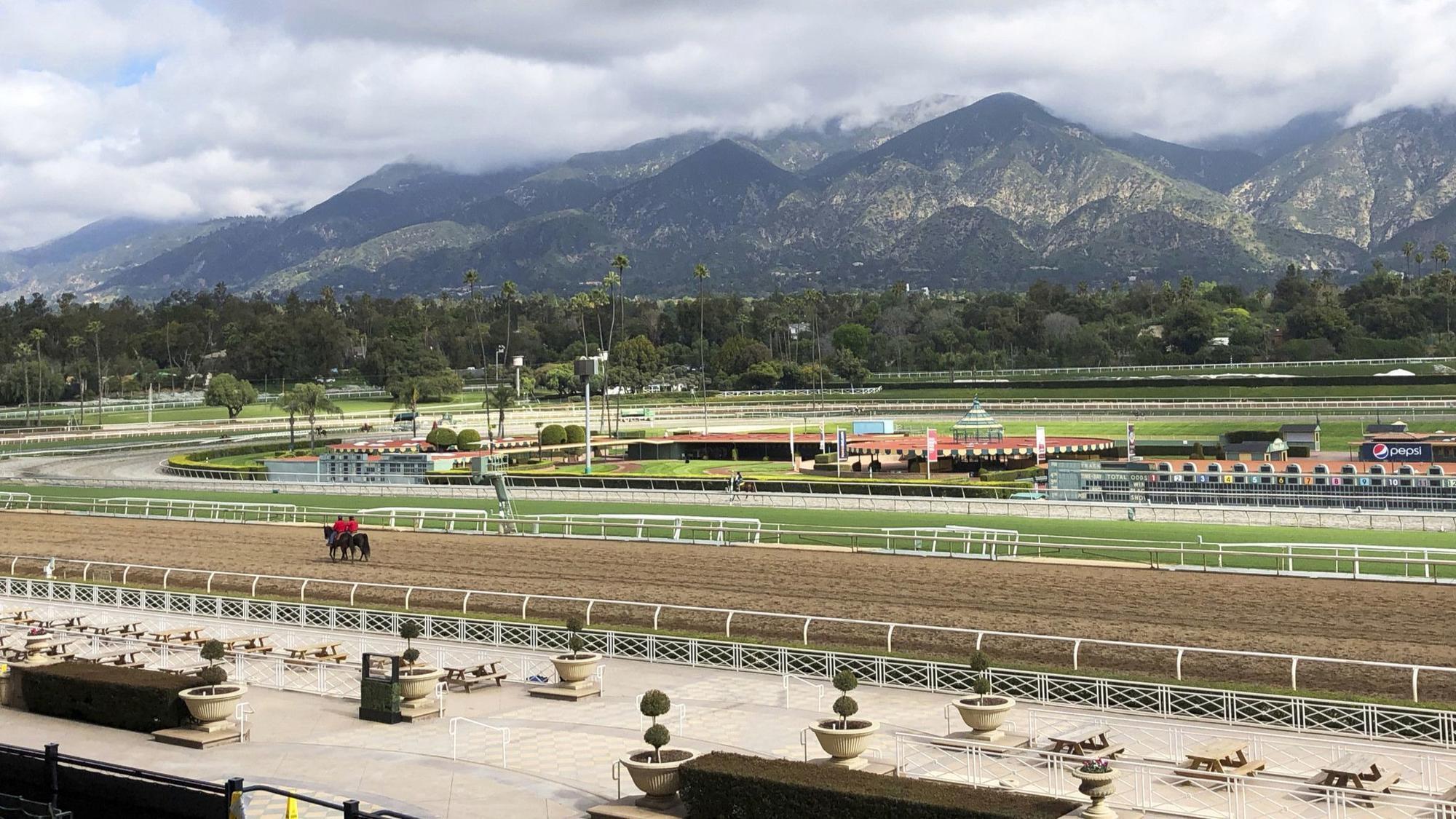 Another Horse Fatality At Santa Anita 24 Thoroughbreds