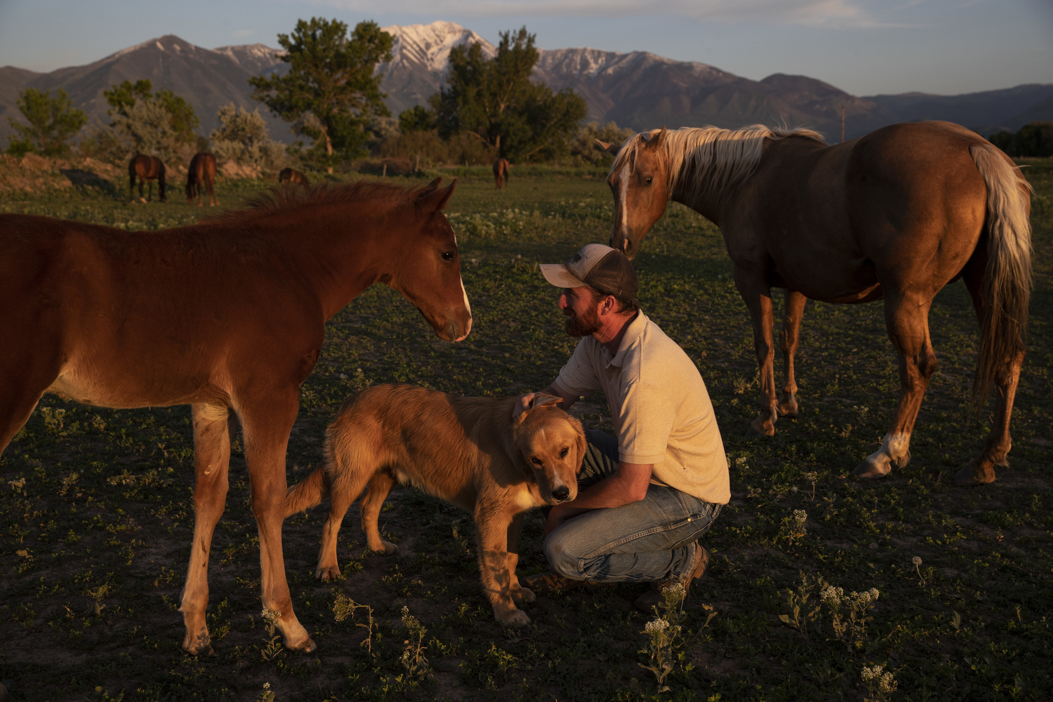 BENJAMIN, UTAH — TUESDAY, JUNE 4, 2019: Nathan Ivie with his golden retriever Max and horses he tra