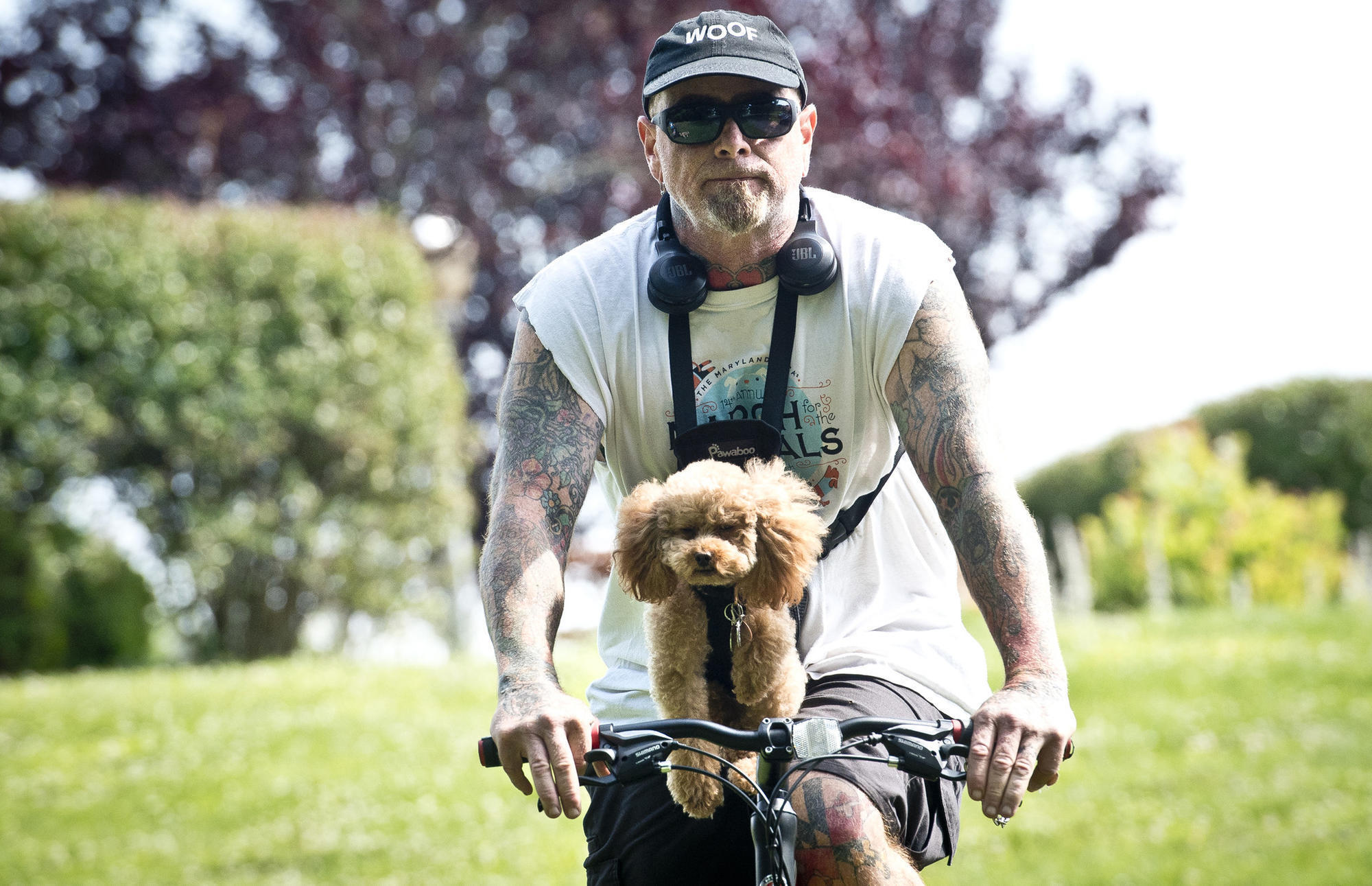 For Father's Day, some raise money for SPCA with their dogs