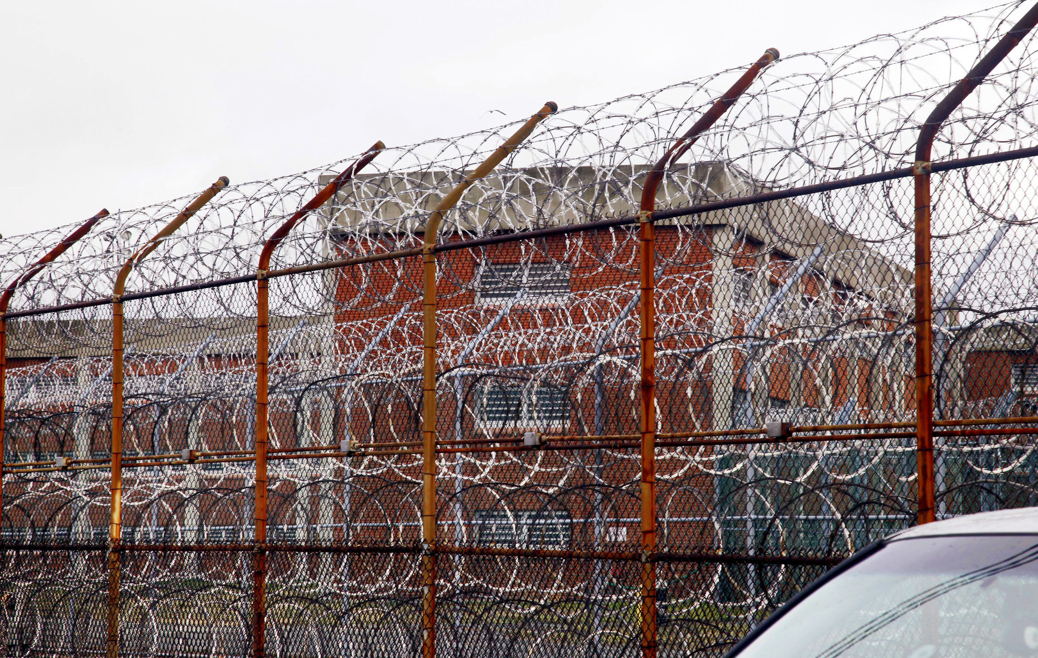 Manhattan judge rules 16 'vulnerable' city inmates will be released due to coronavirus concerns on Rikers Island