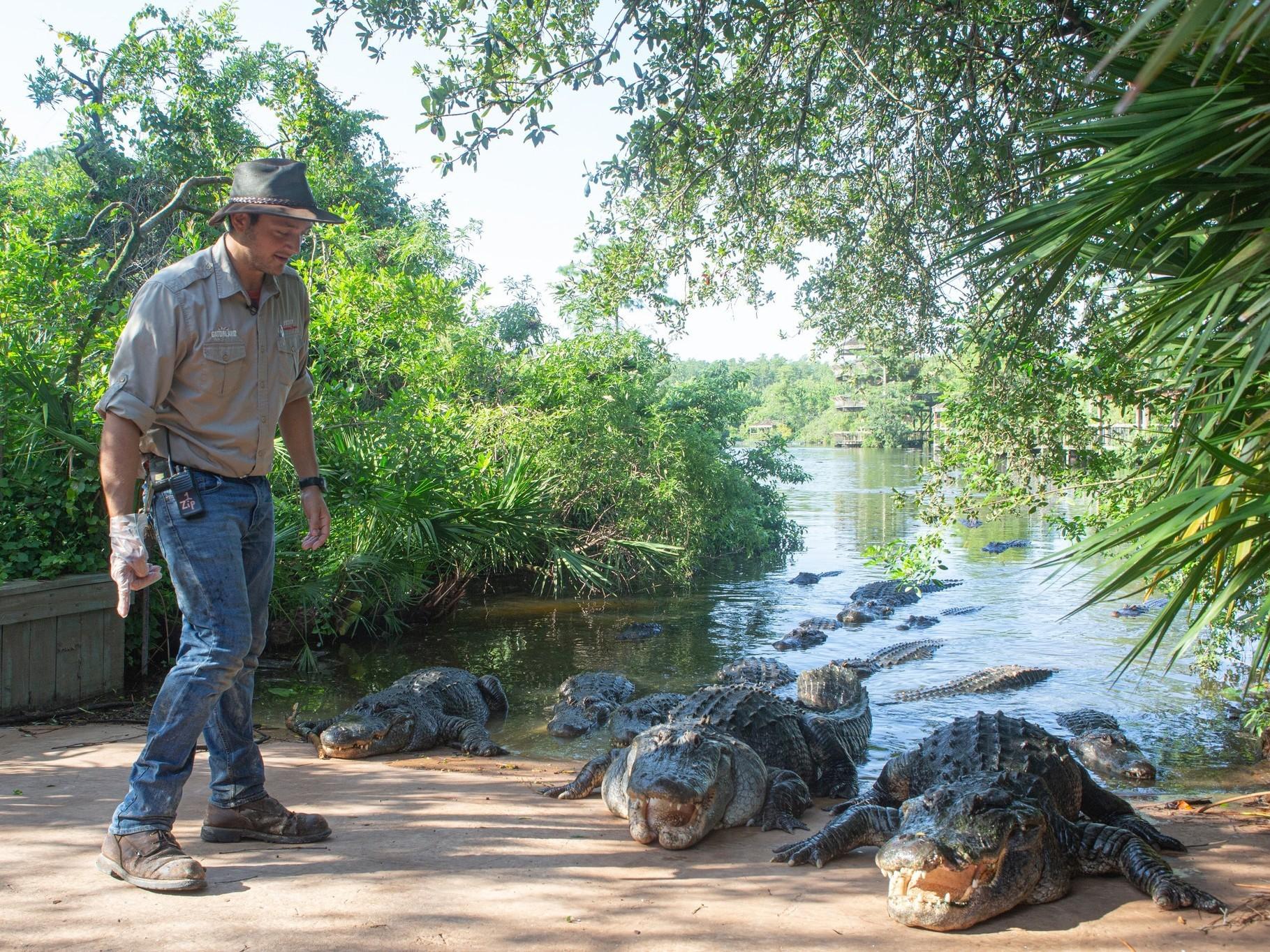 Gatorland half off for Florida residents