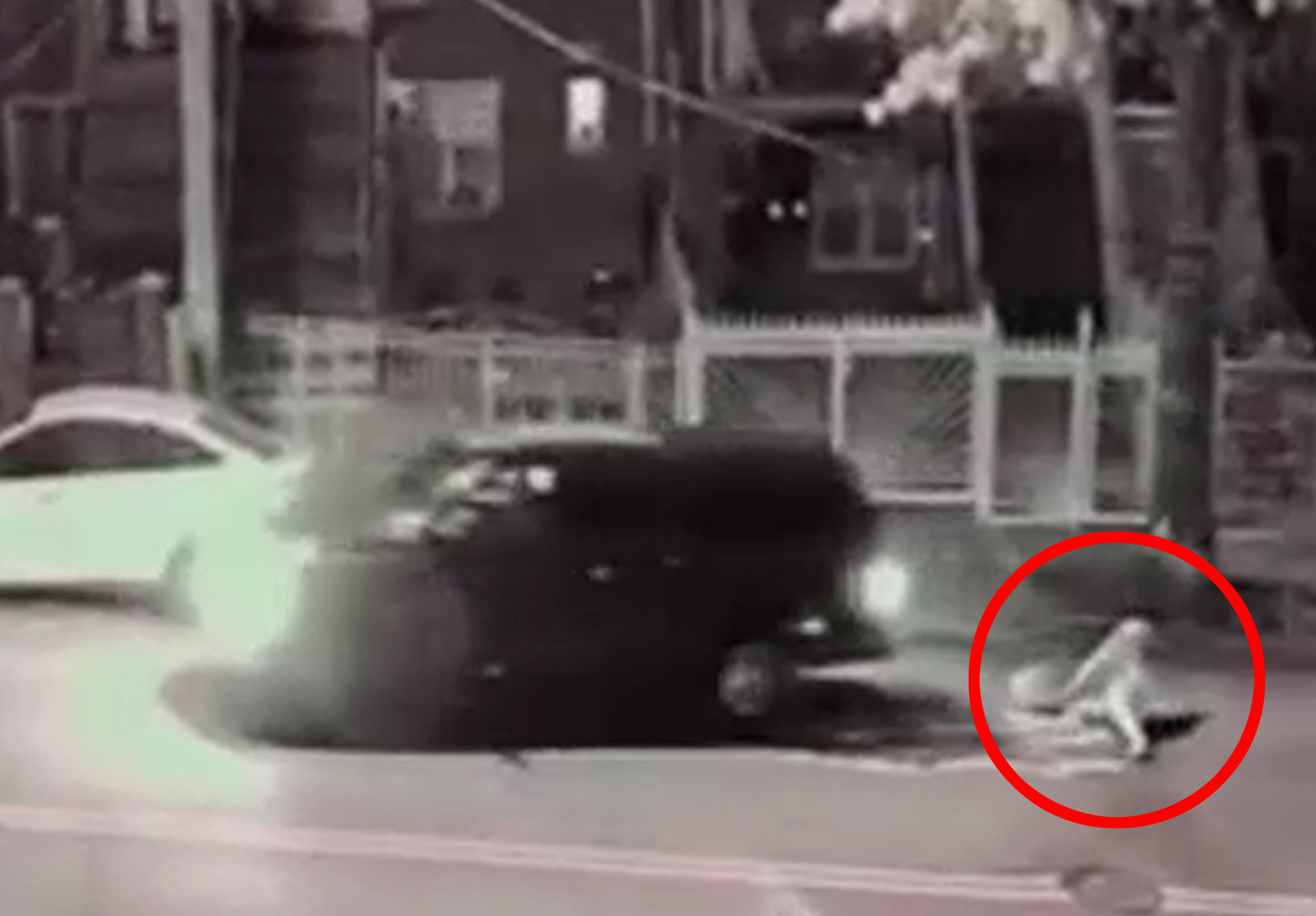SEE IT: Cops hunt for motorist who ran over Bronx woman's legs and sped off
