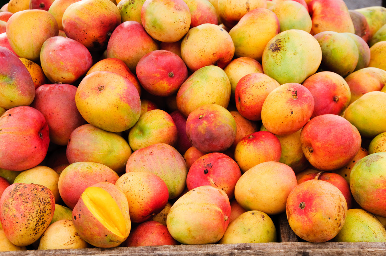 Pulp non-fiction: Mango mess stalls traffic on Maryland freeway after fruit truck overturns