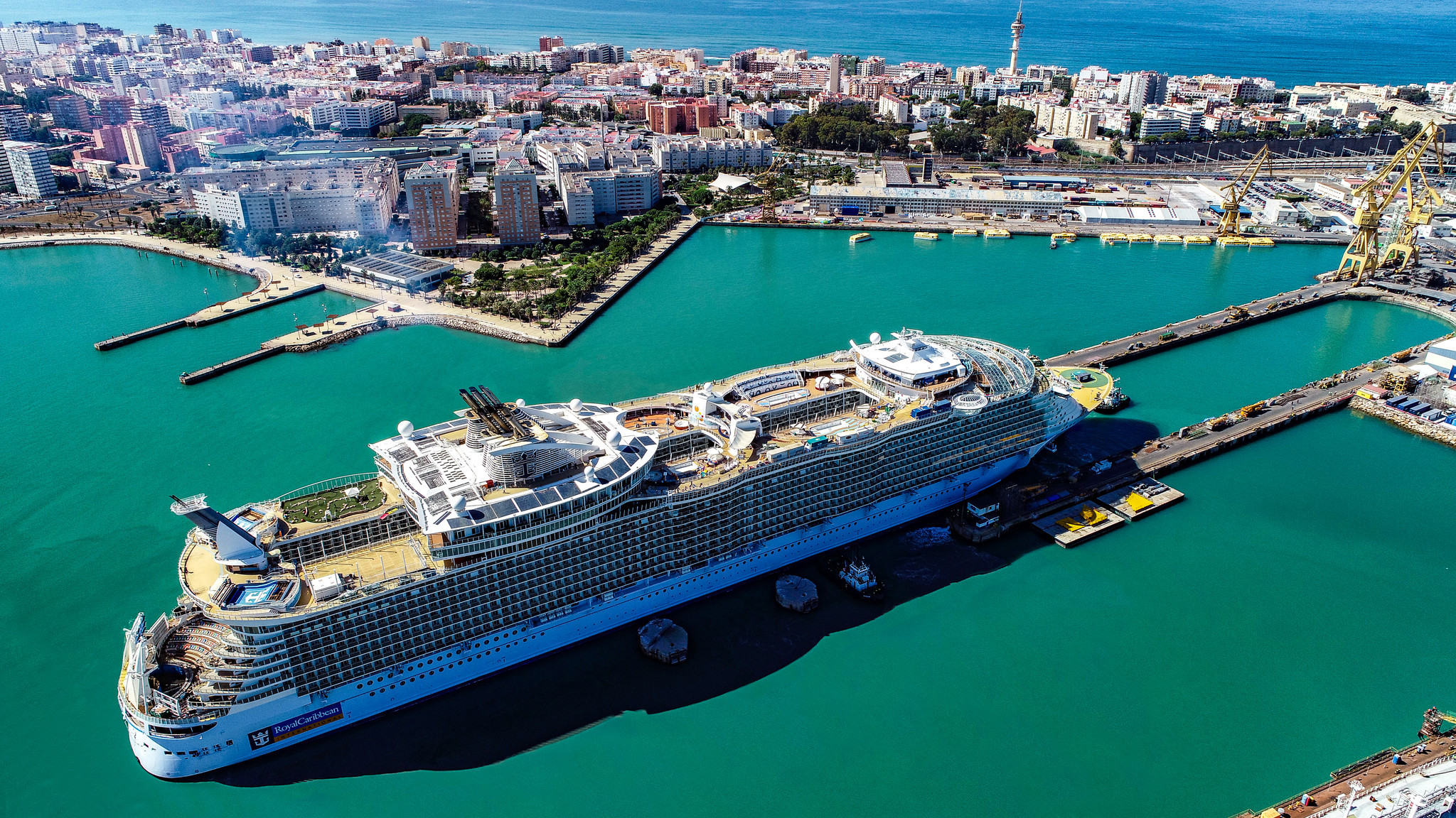 Body of Florida man found off coast of Puerto Rico after 'clean jump' from 10th story of Royal Caribbean cruise ship