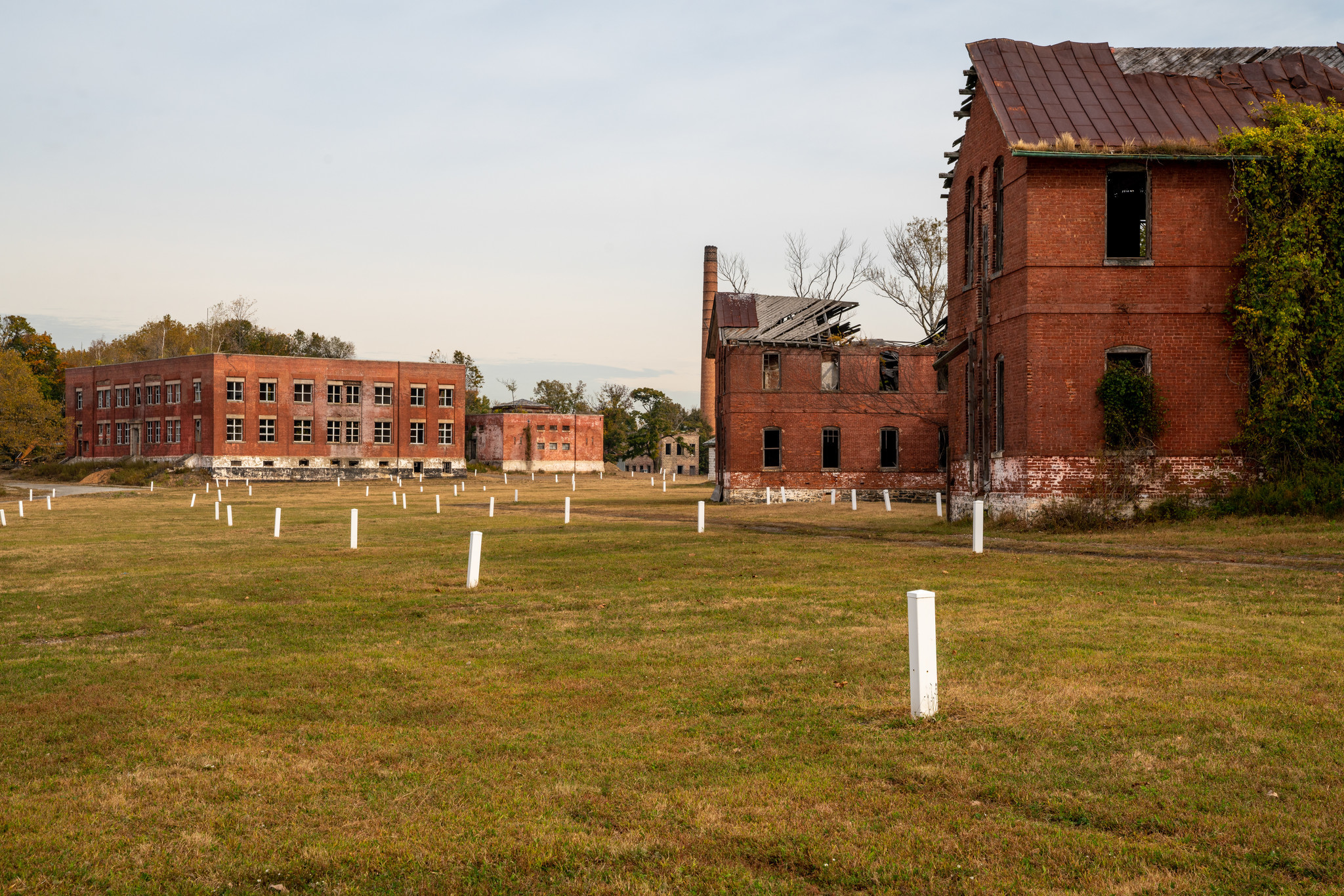 Access to Hart Island burial ground expanded under law signed by de Blasio
