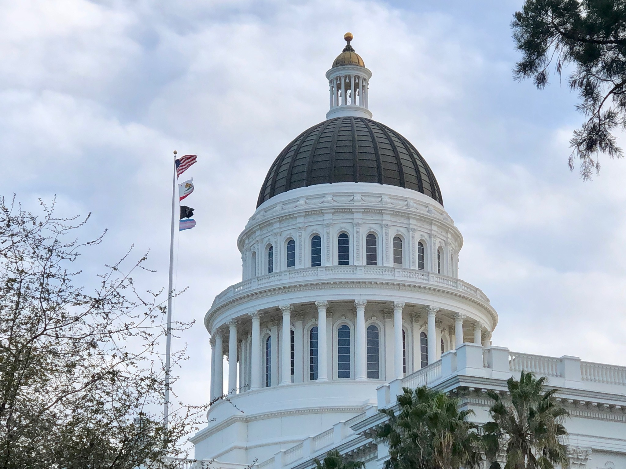 Transgender pride flag flies over California State Capitol for day of remembrance