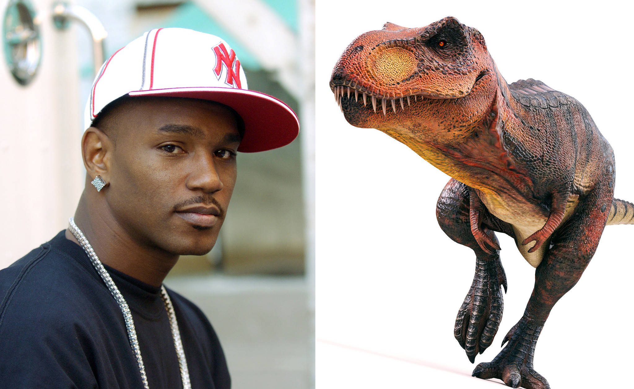 Cam'ron on dinosaurs: 'There's no proof' they existed