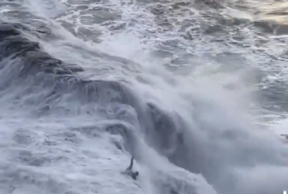 SEE IT: Giant wave crashes down on unsuspecting beachgoer