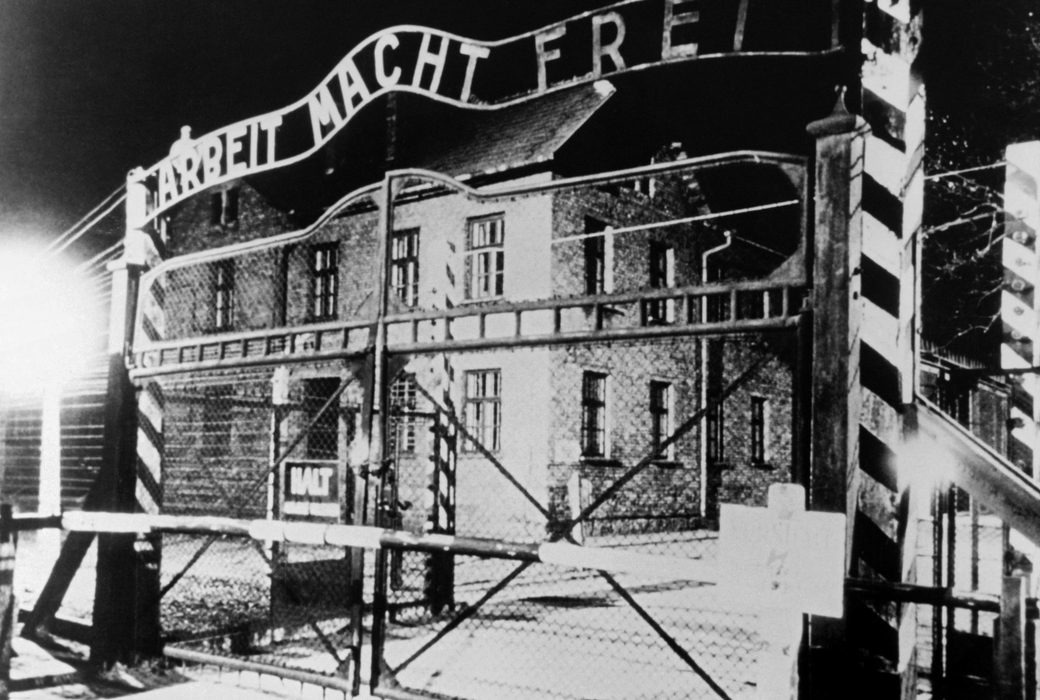 75 years ago, Hell's gates opened: How Holocaust survivors went on after the liberation of Auschwitz