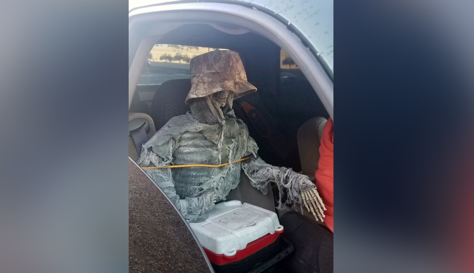 Bonehead driver busted for driving in high-occupancy vehicle lane with dressed-up skeleton