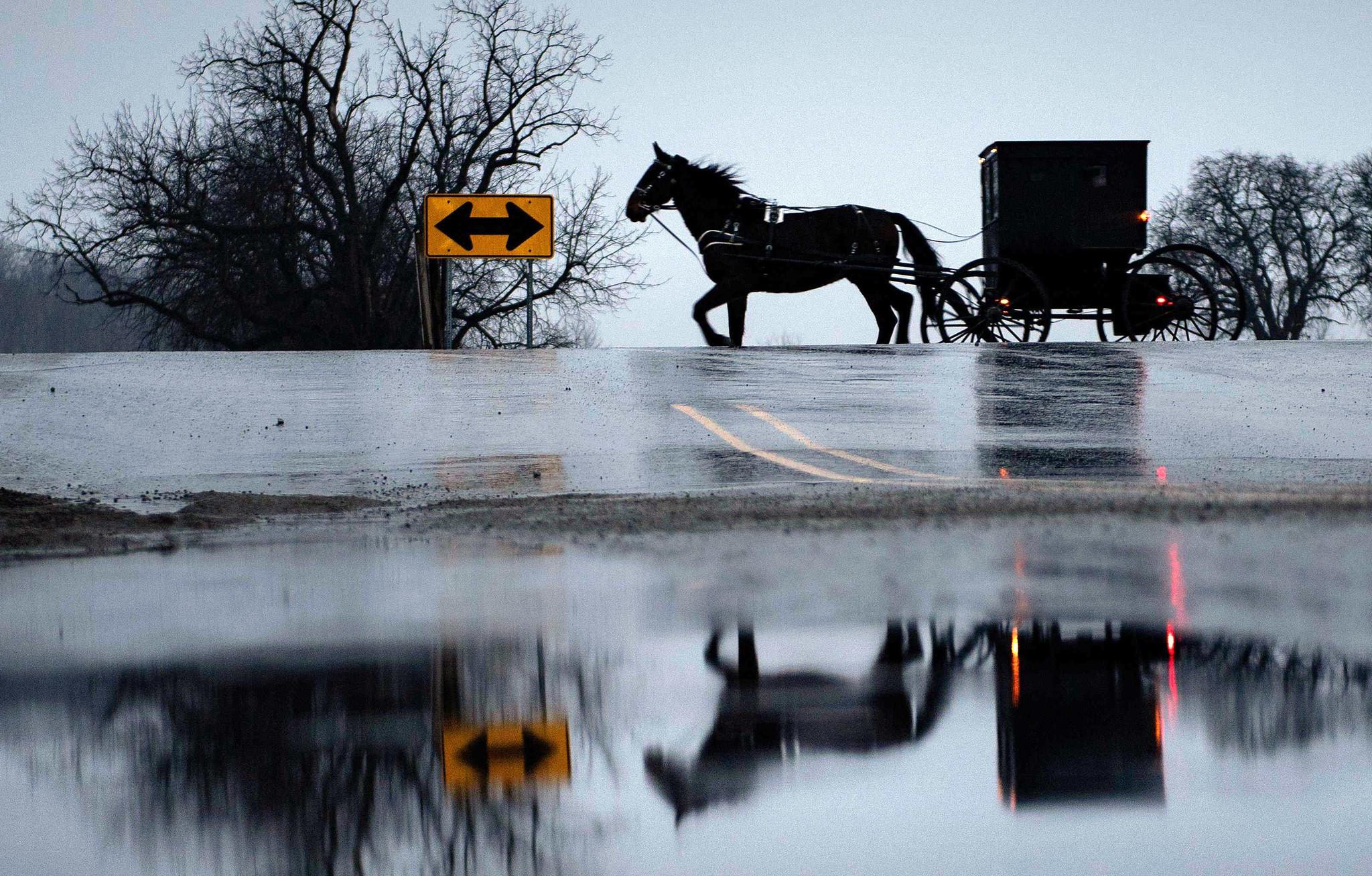 $60M Ponzi scheme targeted Amish and Mennonites: feds