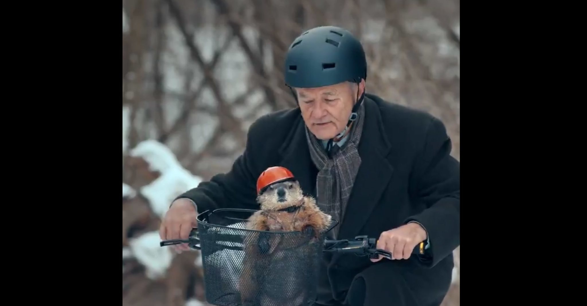 Bill Murray reunites with Punxsutawney Phil for Groundhog Day Jeep commercial
