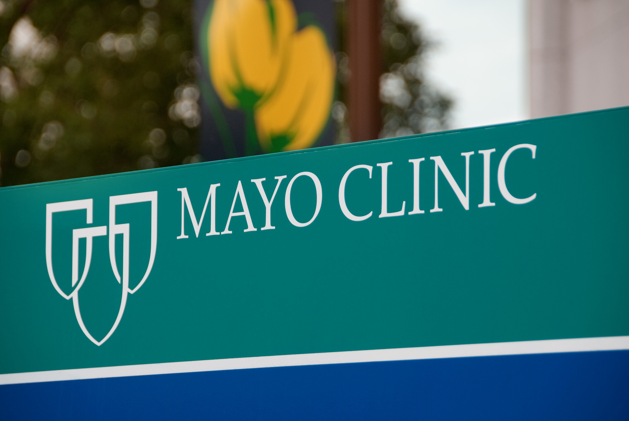 364 applicants mistakenly receive acceptance letters from Mayo Clinic Alix School of Medicine