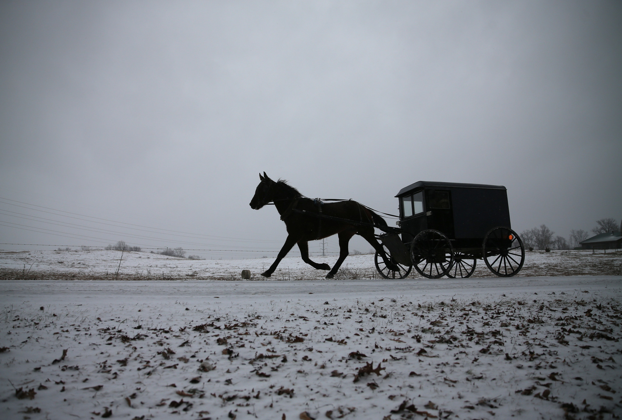 Amish buggies in Ohio may have to add flashing lights under proposed law