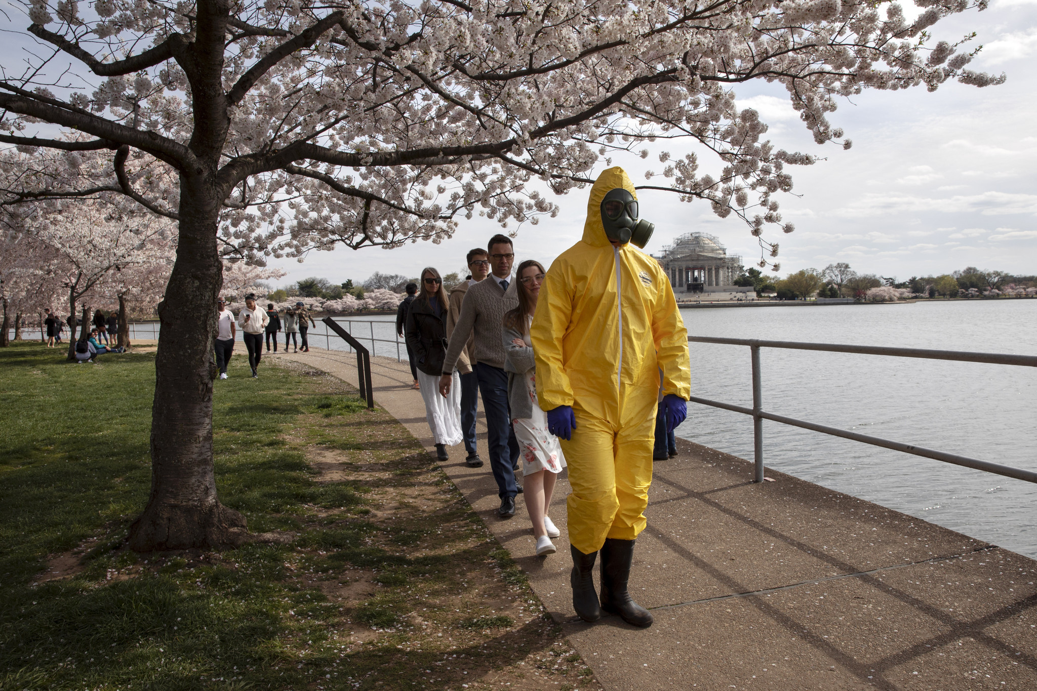 D.C. mayor brings National Guard to keep crowds from city's cherry blossom trees amid coronavirus fears