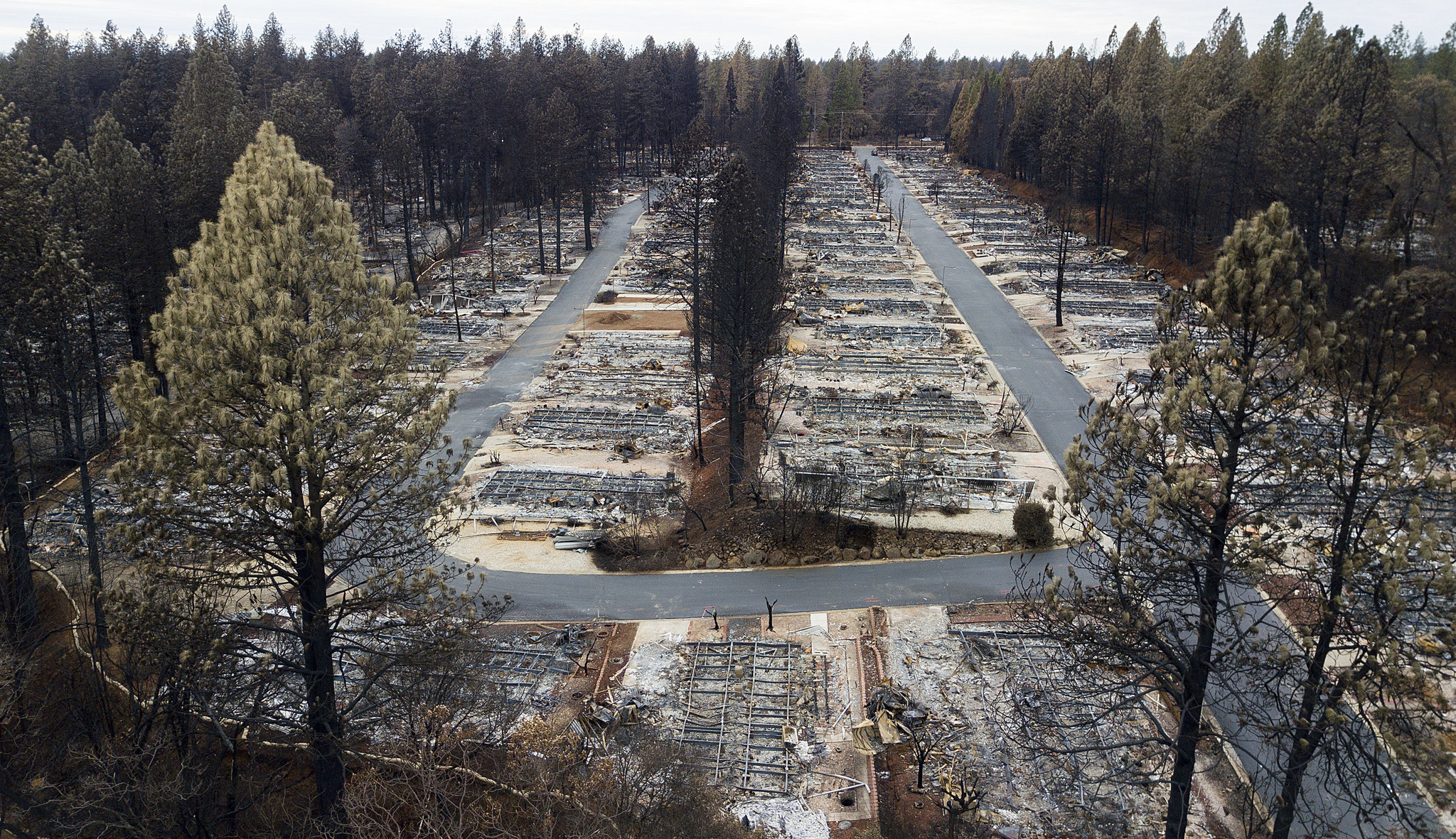 PG&E will plead guilty to 84 counts of involuntary manslaughter over monster 2018 Camp fire