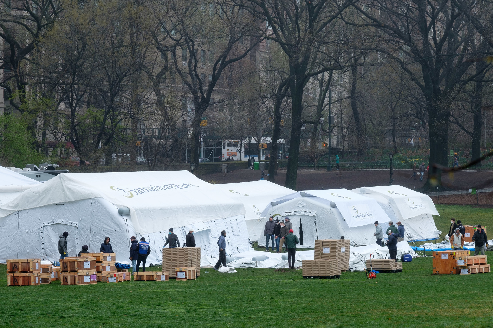 Field hospital to fight coronavirus goes up in Central Park