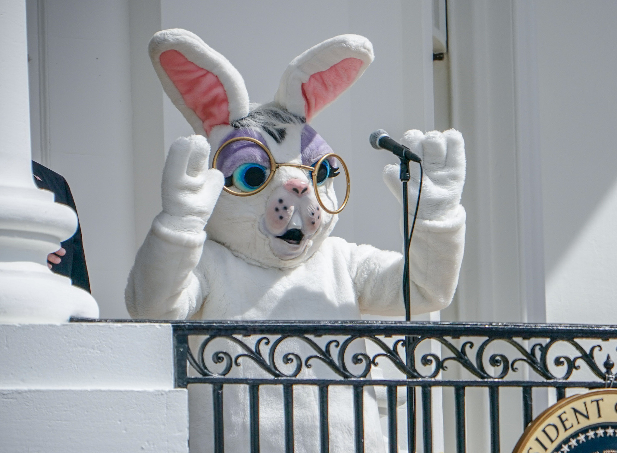 New Hampshire declares Easter Bunny 'essential'