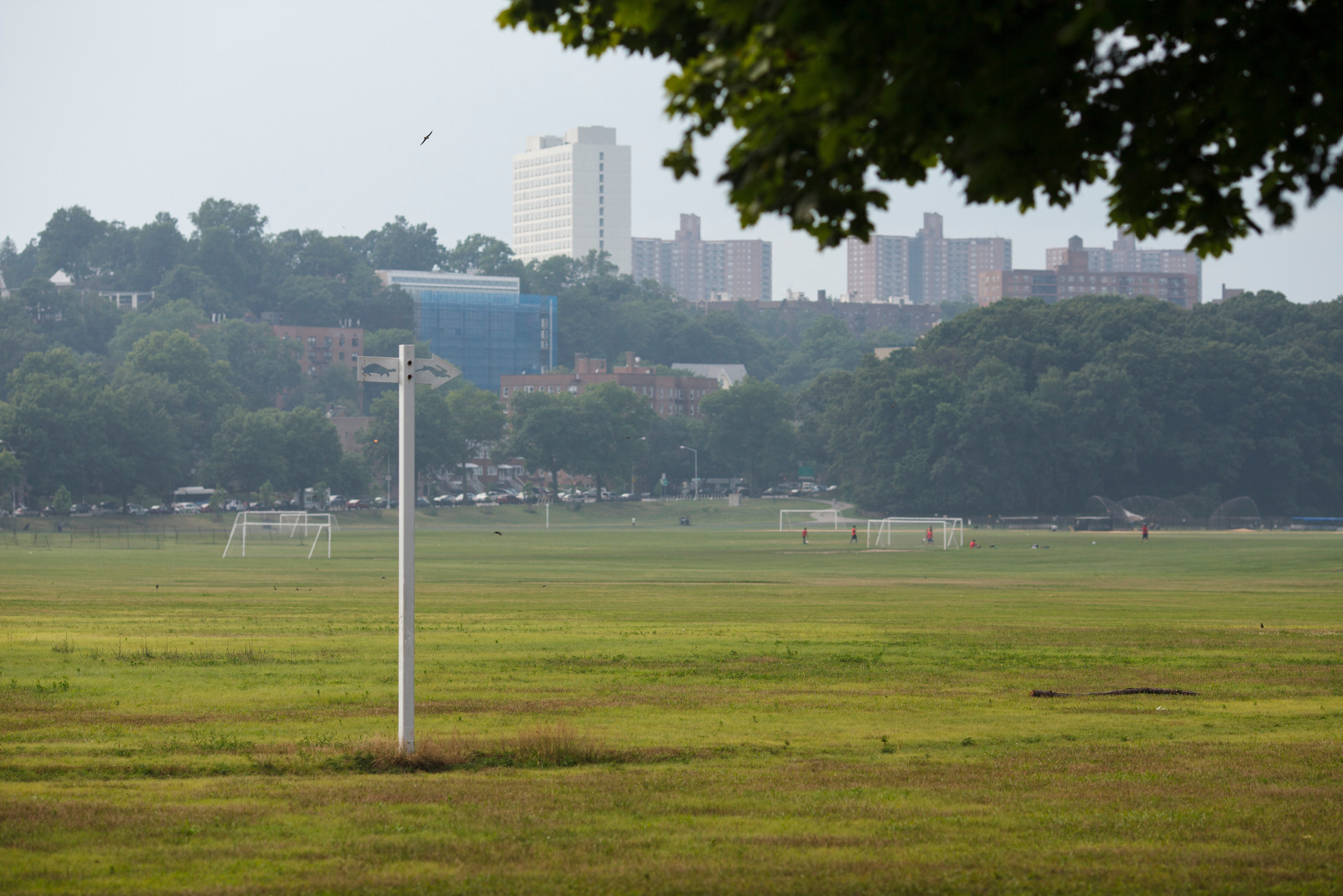 NYC's third-largest park to host 200-bed emergency hospital, local officials say